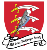 Mid Essex Budgerigar Society